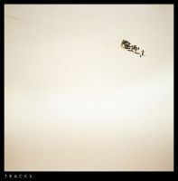 tracks-web
